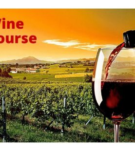 Free Wine Course Online