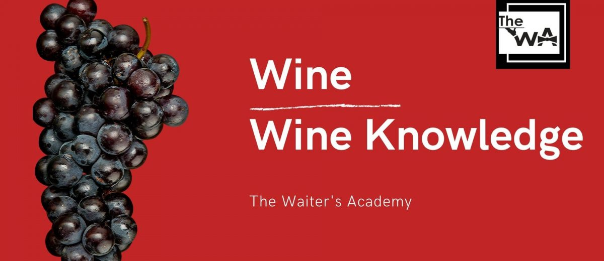 Wine: Wine Knowledge and Service Procedures